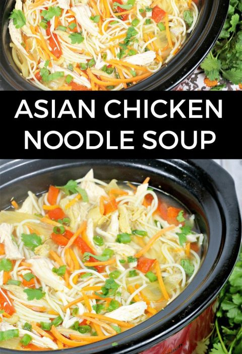 Asian Chicken Noodle Soup in the Slow Cooker - this soup recipe is really tasty!...