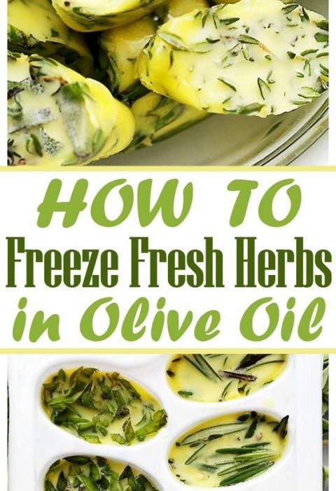 How to Freeze Fresh Herbs in Olive Oil - Freezing fresh herbs in olive oil is th...