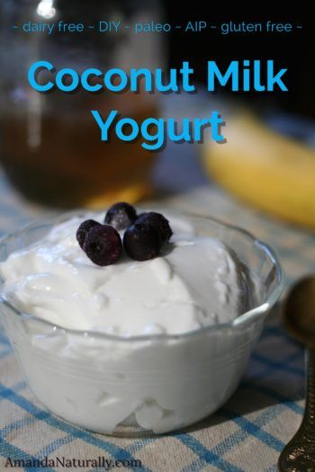 Coconut Milk Yogurt - this easy recipe uses my favourite kitchen gadget, The Ins...
