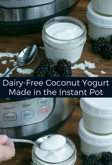 Healthy Instant Pot Recipes: The Ultimate Collection
