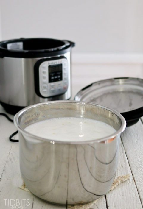 Homemade Yogurt with an Electric Pressure Cooker