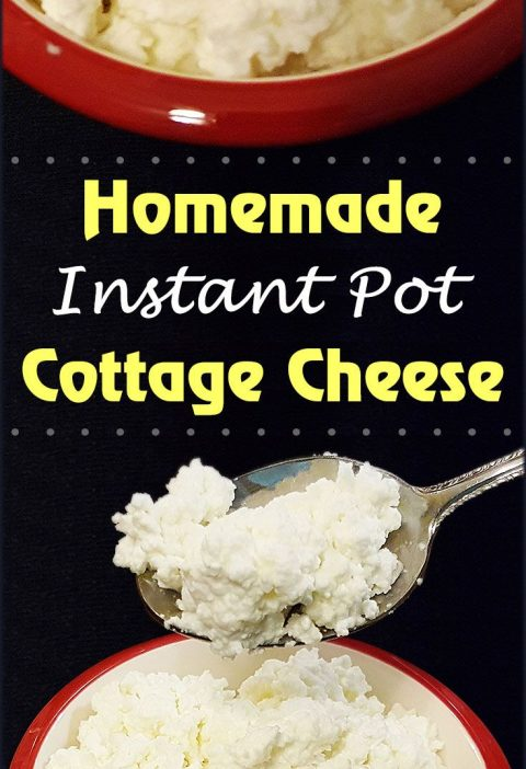 Instant Pot Homemade Cottage Cheese Recipe via This Old Gal