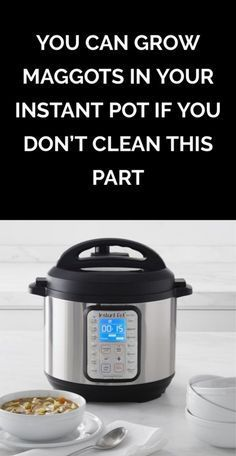 You Can Grow Maggots in Your Instant Pot if You Don't Clean This Part