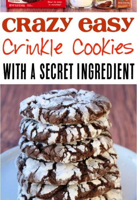 Mexican Crinkle Cookie Recipe! {Spicy Chocolate Cookies} - Never Ending Journeys