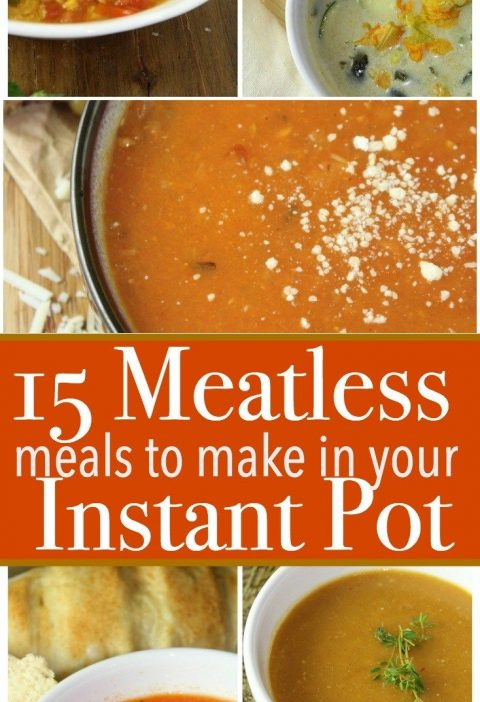 Sometimes we all need a little variety in our meals! Here are 15 easy Meatless M...