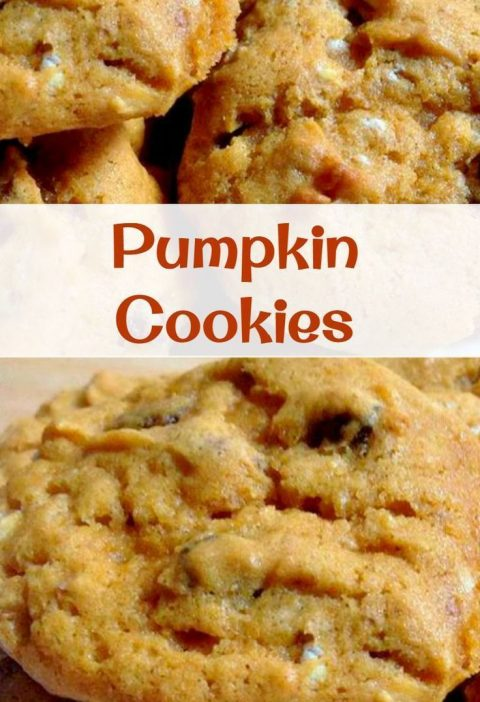 Delicious Pumpkin Cookies! Easy to make and they go fast so make sure you have p...